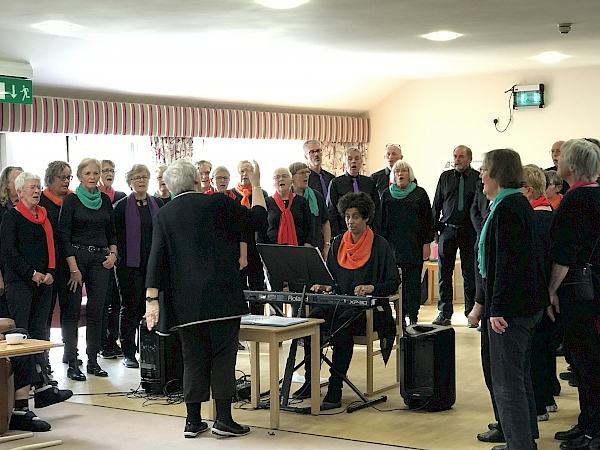 Sing 'n' Swing perform in Soham Lodge Care Centre